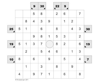 puzzel Haijo Persbelangen maart 2011 copy website
